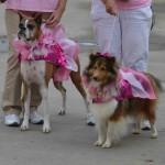 Pink Parade 1
